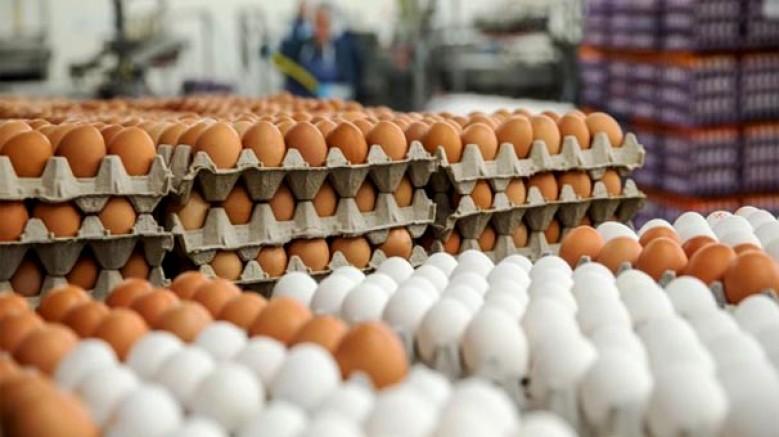 'İki haftadır Irak pazarına yumurta ihraç edemiyoruz'