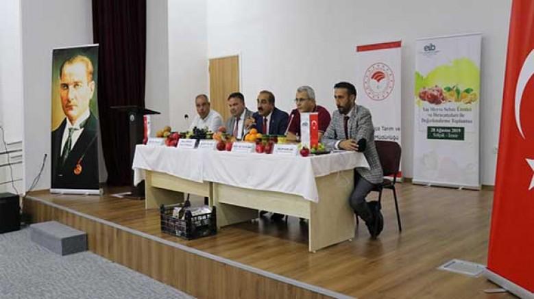 İzmir'in Selçuk ilçesi, katma değerli tarımsal ürün ihracatına hazırlanıyor