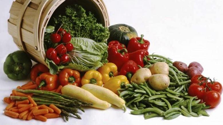 Organik Ürünler Festivali; 24-25-26 Mayıs